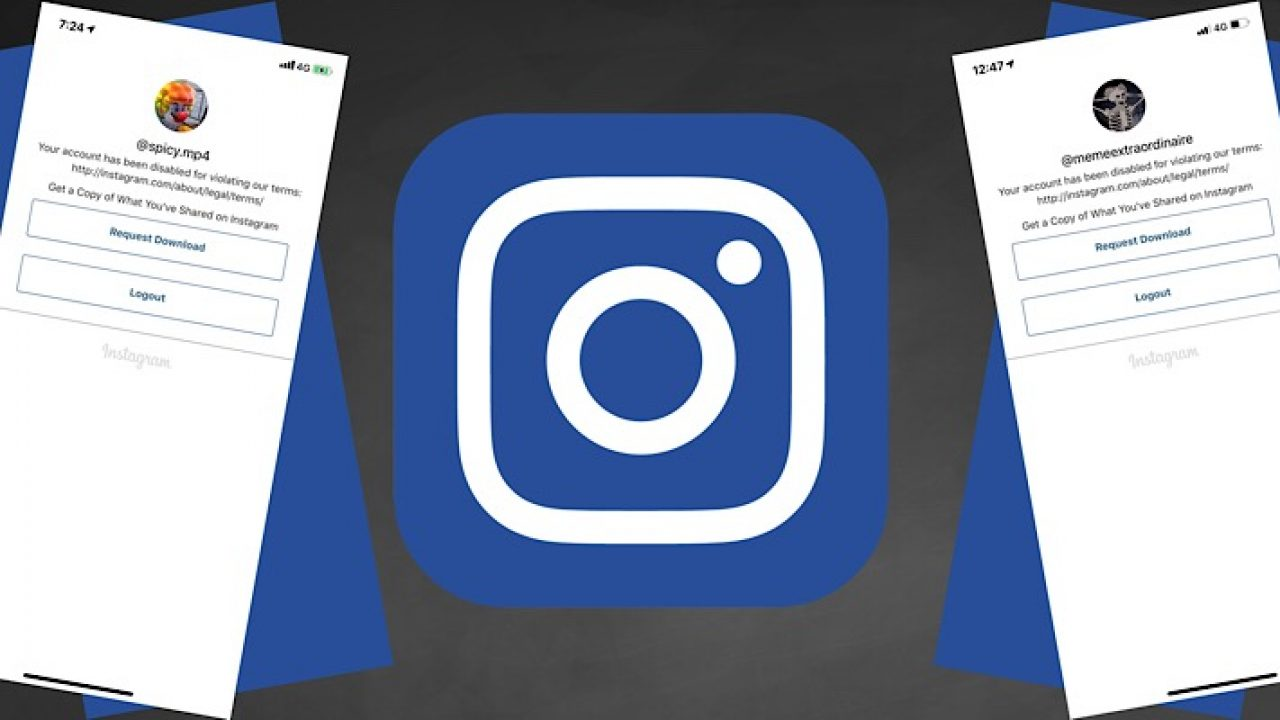 Instagram mass suspends 30+ meme accounts with over 33