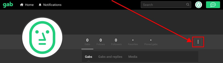 The three dots that open Gab settings.