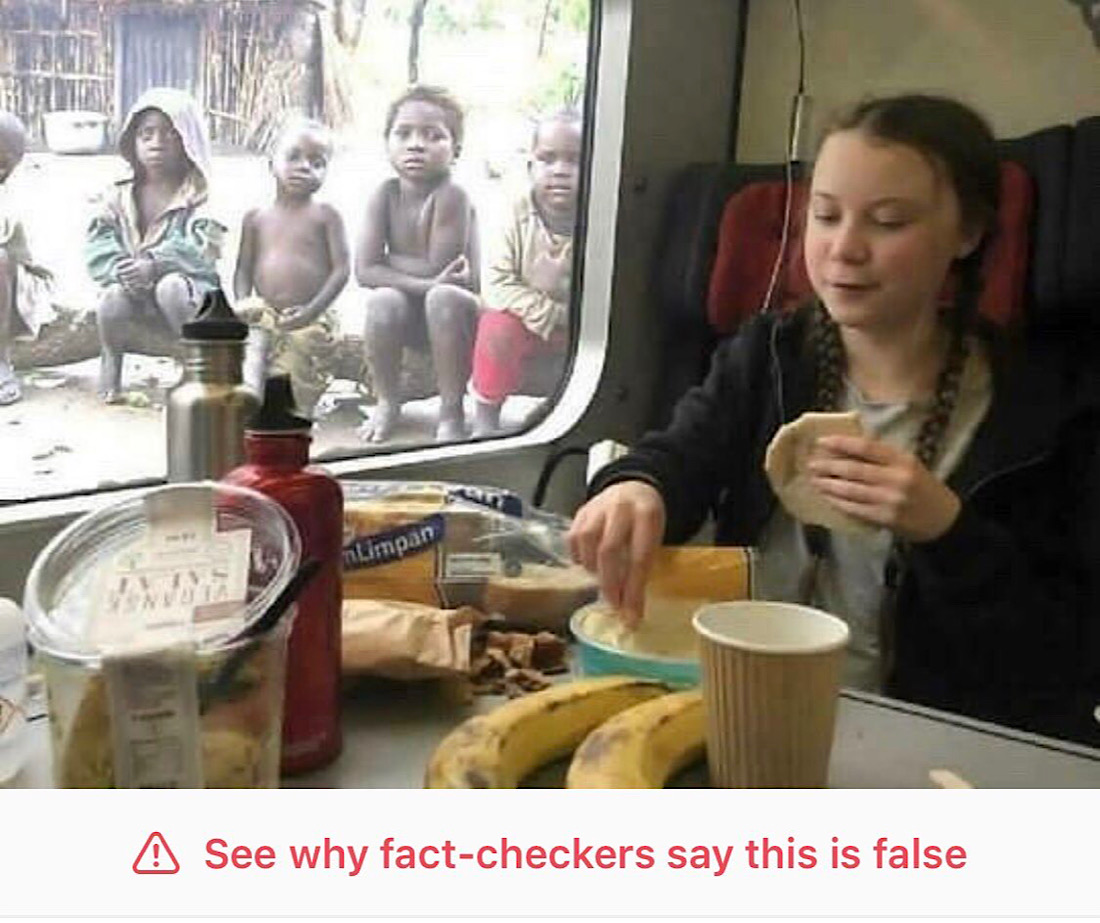 This Greta Thunberg meme was labeled false by Facebook's fact-checkers (Summit News)