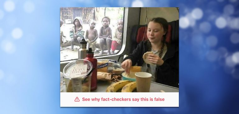 Instagram Fact Checks And Censors Satirical Greta Thunberg Meme
