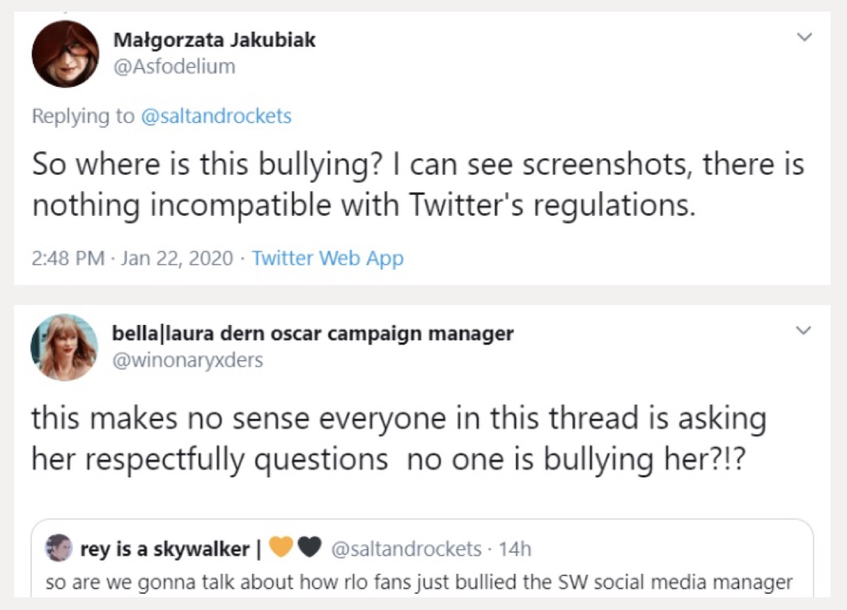 Several Reylos claimed there was no evidence of Buchman being bullyied (Twitter - @saltandrockets)