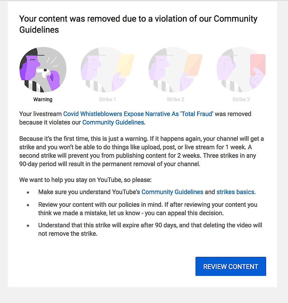 YouTube gave the Ron Paul Liberty Report channel a strike after removing the video (YouTube - RonPaulLibertyReport)